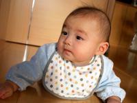 Bahaya Renovasi Rumah bagi Bayi